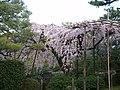 Heian Shrine 平安神宮 - panoramio.jpg