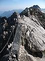Heilbronner Weg Steinschartenkopf Ladder-bridge.JPG