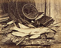 Henry Bailey (English, active late 1860s) - Trout Roach etc. - Google Art Project.jpg