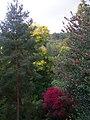 Herbstfarben, Bergpark Kassel - panoramio.jpg