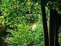 Hidden - panoramio (4).jpg