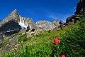 Hiking in the Absaroka Range. Photo by Kirsa Shelkey.jpg
