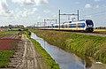 Hillegom SLT 2433-2465 Haarlem (13831374474).jpg