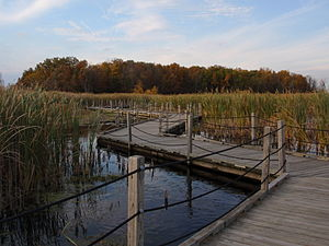 Horicon Marsh - A boardwalk in the marsh