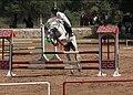 Horse Ride 11.jpg