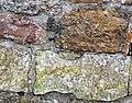Horse hoof petrosomatoglyph, Ardrossan Castle, North Ayrshire - detail.jpg