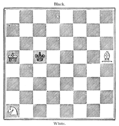 Fig. 20.[White to Move and Win.]