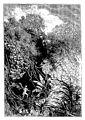 Hugo - Bug-Jargal, 1876 0079.jpg