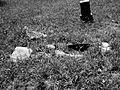 Humble Negro Cemetery, Humble, Texas 0508101251BW (4592284618).jpg