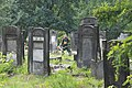 IMG 0146 Łódź Jewish Cemetery august 2018 004.jpg