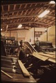 INSIDE THE LITCHFIELD PAPER COMPANY MILL NEAR TUPPER LAKE FRESHLY CUT BOARDS ARE FED BY HAND ONTO BELT-RAMP LEADING... - NARA - 554431.tif