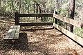 Ichetucknee Springs State Park Overlook 2.jpg