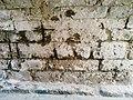 Imagen muro interior.jpg