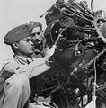 Indian and RAF ground crew, 1943.jpg