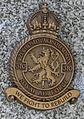 Insignie.310.CS.perut.RAF.jpg