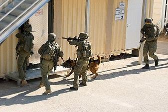 Israeli-Police-Facebook--YAMAM-004.jpg