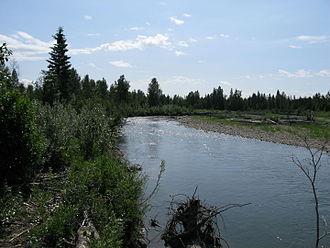 James River (Alberta) - The James River near Sundre, Alberta