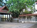 Janardhana swamy temple.jpg