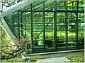 January Frost Botanic Garden Freiburg Gen Laboratories - Master Botany Photography 2014 - panoramio.jpg
