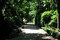 Jardin Botanico (3) (9379294768).jpg