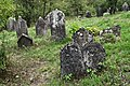 Jewish cemetery Checiny IMGP7880.jpg