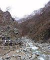 Jigokudani YaenKouen (Monky park) , 地獄谷 野猿公苑 - panoramio (10).jpg