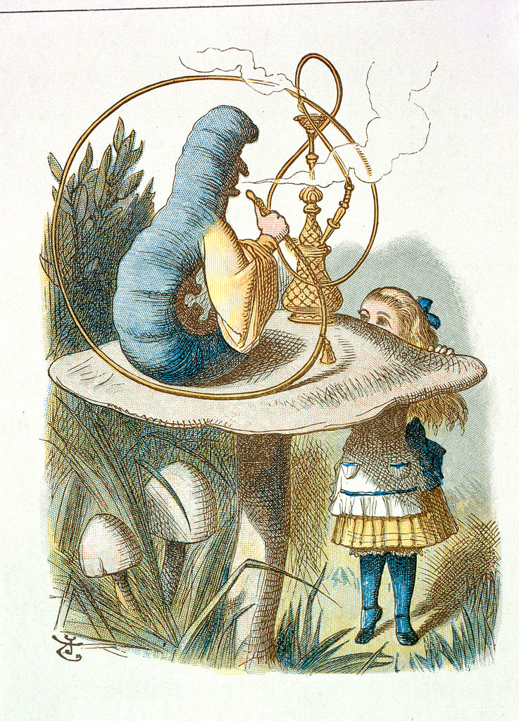 Alice meets the Caterpillar
