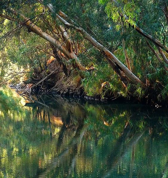✰✰ الأردن _سياحة علاجية و جولة في التاريخ القديم_✰✰ 564px-Jordan_River_B