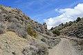Jumbo Grade Trail - panoramio (6).jpg
