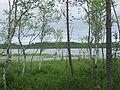 Kärkkäänjärvi.JPG