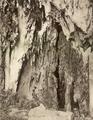 KITLV - 79953 - Kleingrothe, C.J. - Medan - Batu Caves near Kuala Lumpur - circa 1910.tif