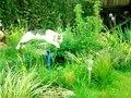 File:Katzensprung in Zeitlupe.webm