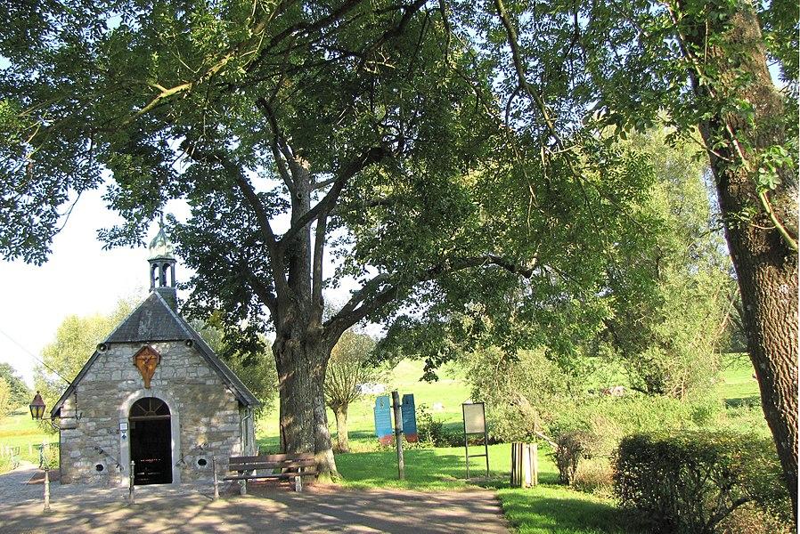 La Calamine - Chapelle St Roch. Le tilleul aurait 400 ans.