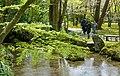 Kenroku-en - Kanazawa, Japan - DSC09774.jpg