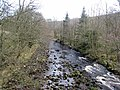 Kershope Burn - geograph.org.uk - 691202.jpg