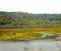 Kickapoo River - panoramio (2).jpg