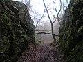 Kidtor Dale - geograph.org.uk - 102828.jpg