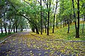 Kirovskiy rayon, Khabarovsk, Khabarovskiy kray, Russia - panoramio (79).jpg