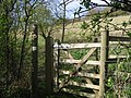 Kissing gate on the Stour Valley Walk - geograph.org.uk - 785972.jpg