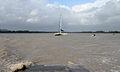 Kourou river estuary 2013.jpg