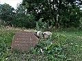 Kretinga. Jewish cemetery. 2018(20).jpg