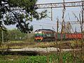 Kuźnia Raciborska, linia kolejowa.JPG