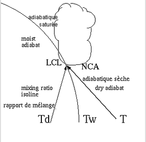 300px-LCL-NCA.png