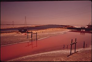 Leslie Salt - Leslie Salt ponds, 1972