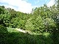 LSG OS 00021 Brennenheide 17.jpg