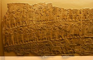 Siege of Lachish - Image: Lachish Relief, British Museum