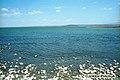 Lake Rudolf (Озеро Рудольф).jpg