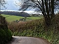 Lane to Daccombe - geograph.org.uk - 763682.jpg