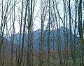 Les Agudes, al Montseny, des de Santa Fe - panoramio.jpg