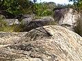 Libélula na Cachoeira Paraíso em Lapinha da Serra.JPG